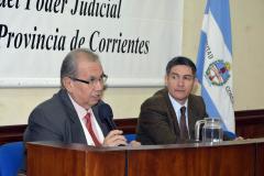 Presentación del libro del Dr. González Junior - Ley Orgánica de los Partidos Políticos